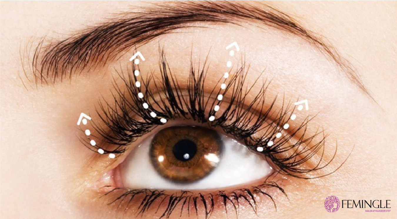 Grow Fuller Longer Eyelashes